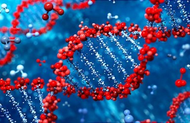 免费治疗|Faricimab治疗湿性黄斑变性(AMD)临床试验