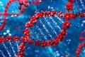 肺癌基因检测首检1代靶向药可以吃,为什么耐药后二检3代靶向药却不能用?