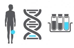 癌症早期筛查指导手册