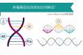 肿瘤基因检测报告该怎么看?
